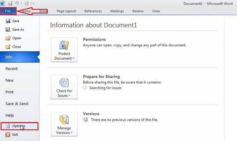option Office 2010